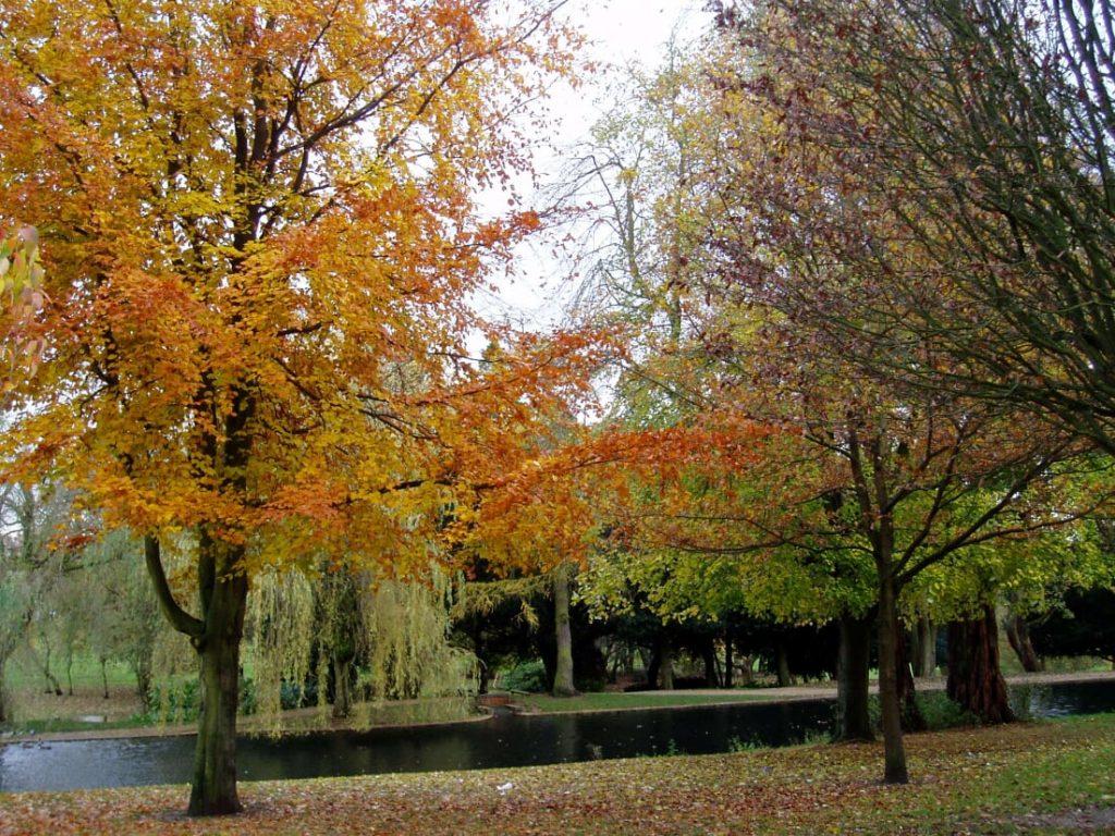Autumn Golf Greenkeeping Tools